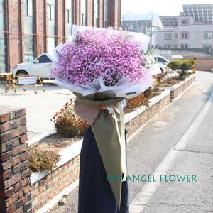 핑크안개 대형꽃다발 (대전만 가능)