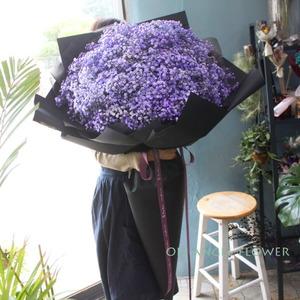 보라안개 대형꽃다발 (대전만가능)